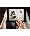 Institutul Cultural Român vrea să realizeze un sistem naţional al cărţilor online